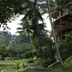 Four Seasons Resort Bali at Sayan resmi