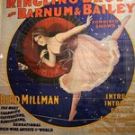 Vintage Poster Collection