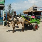 horse cart, one of the transportation to reach our villa