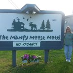 Photo de Mangy Moose Motel