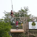 on the zip-wire