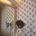 Wallpaper in the bathroom