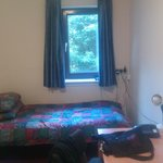 bed and window in the room