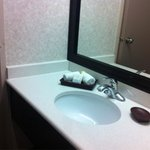 BEST WESTERN PLUS Carlton Plaza Hotel Foto