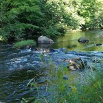 Little River Bed and Breakfast照�