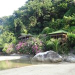 Bamboo Hill Chalets Foto