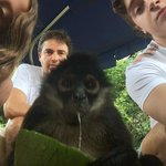 Tour to Monkey Island with Cindy the monkey