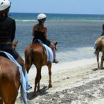 horseback ride to the beach