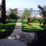 Palm Garden Amed Beach & Spa Resort Baliの写真