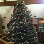 Christmas Tree in Clubhouse