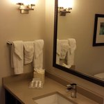 Hilton Garden Inn Chicago Downtown/Magnificent Mile Foto