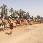 Camel trip book at reception or concierge