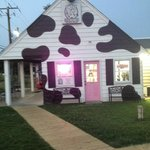 Sweet Cowoline's Ice Cream and Udder Things