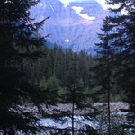 Foto de Mt. Robson Mountain River Lodge
