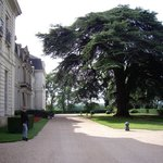 Photo de Chateau de Rochecotte