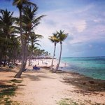 Photo de Club Med Punta Cana
