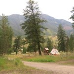 Shoshone Lodge & Guest Ranchの写真
