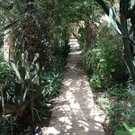 one of the numerous paths