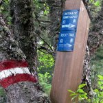 Local Trail Markers