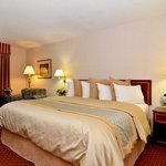BEST WESTERN PLUS Morristown Inn resmi