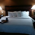 Hampton Inn Baltimore - Washington International Airport resmi