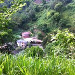 Photo of Rafjam's Bed & Breakfast, Blue Mountain Cottages and Nature