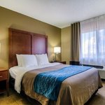 Photo de Gurnee Comfort Inn