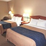 Photo of Comfort Inn Ottawa