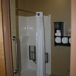 Holiday Inn Express Hotel & Suitesの写真