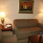 Foto di Holiday Inn Express Pigeon Forge/Dollywood