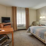 Candlewood Suites Ft. Lauderdale Air/Seaportの写真