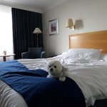 Φωτογραφία: Holiday Inn Stoke on Trent M6