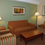 Holiday Inn Express & Suites Niagara Falls Foto