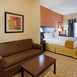 Holiday Inn Express Hotel & Suites Talladega resmi