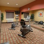Holiday Inn Express Hotel & Suites Winona North照片