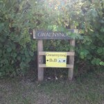 Foto van Gwaenynog Farmhouse B&B