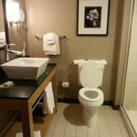 Cambria Suites at Consol Energy Center Foto