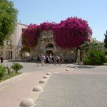 Kos Town by the Ancient Agora