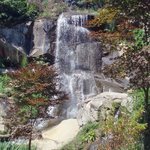 Waterfall near Japanese Garden