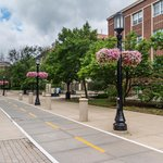 Walkable and Bike Friendly Campus