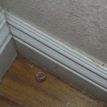 Unclean floor/skirtings