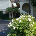 Westlake Village Inn Foto