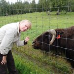 Rene at Palmer Musk Ox Farm in Alaska.
