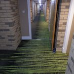 New Carpets in the corridors