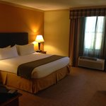 Holiday Inn Express Hotel & Suites-DFW North의 사진
