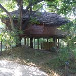 صورة فوتوغرافية لـ ‪andBeyond Lake Manyara Tree Lodge‬