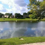 Φωτογραφία: Wyndham Garden Schaumburg Chicago Northwest