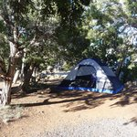 Photo of Desert View Campground