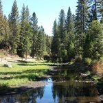 Yosemite Lakes RV Resort照片