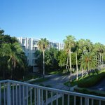 Photo of Coral Reef Apartments